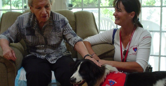Senior resident in a pet therapy session at Shalom Elderly Care's senior assisted living residence